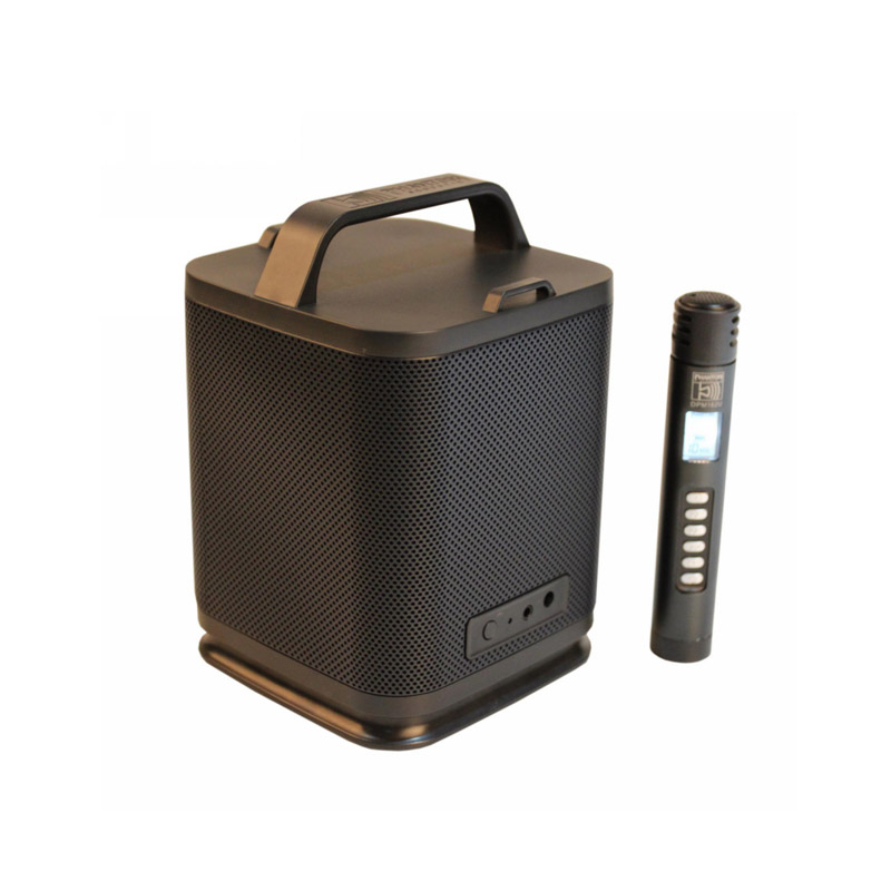 dual channel Bluetooth 2.4G speaker