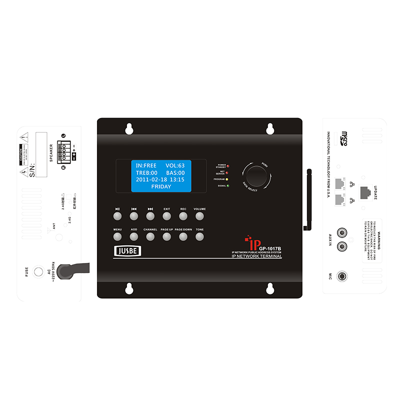 IP network audio on demand Bluetooth terminal